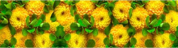 Скинали 'Желтые георгины'