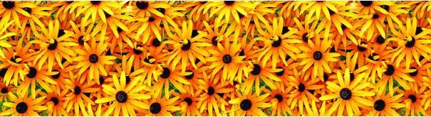 Скинали 'Фон с желтыми цветами'