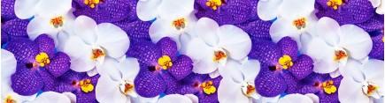 Скинали 'Яркие цветы орхидеи'