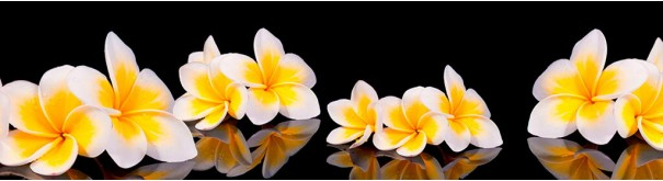 Скинали 'Тропическая лилия'