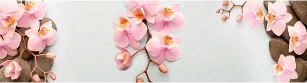 Скинали 'Нежные орхидеи'