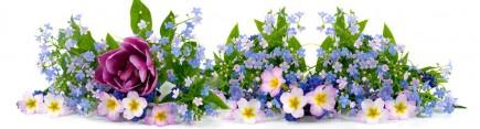 Скинали 'Весенние цветы'