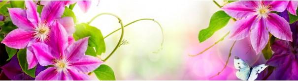 Скинали 'Яркие орхидеи и бабочка'