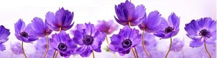 Скинали 'Лиловые цветы'