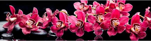 Скинали 'Дзен. Пурпурные орхидеи'