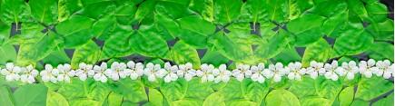 Скинали 'Свежие зеленые листья'