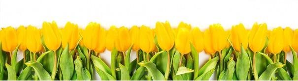Скинали 'Желтые тюльпаны'