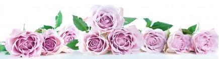 Скинали 'Пастельные розы'