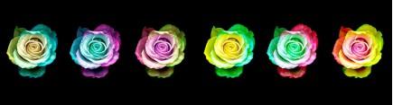 Скинали 'Невероятные розы'