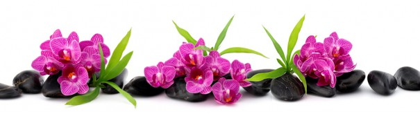 Скинали 'Орхидеи. Сад дзен'