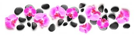 Скинали 'Дорога орхидей'
