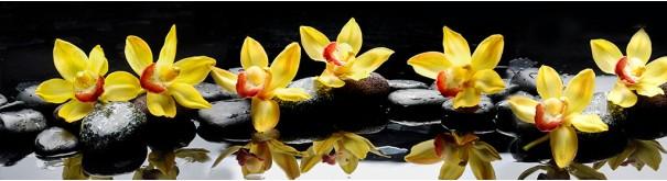 Скинали 'Желтые орхидеи'