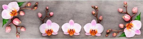 Скинали 'Цветы орхидеи'