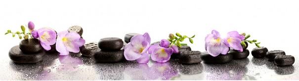 Скинали 'Орхидеи spa'
