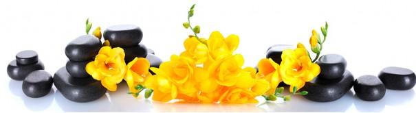 Скинали 'Желтый дзен'