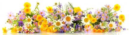 Скинали 'Летние цветы'