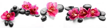 Скинали 'Розовые орхидеи. Дзен'