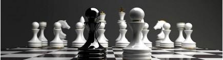 Скинали 'Шахматы'