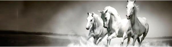 Скинали 'Белая тройка лошадей'