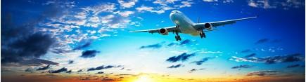 Скинали 'Самолет в небе'