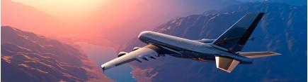 Скинали 'Под крылом самолета'