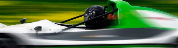 Скинали 'Формула 1'