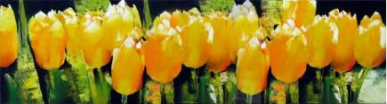 Скинали 'Акварель. Желтые тюльпаны'