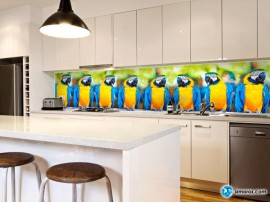 Скинали 'Очень много попугаев'