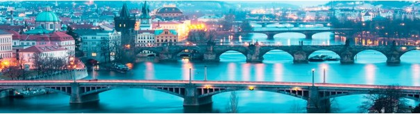 Скинали 'Мосты через Влтаву'
