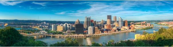 Скинали 'Панорама Питтсбурга'