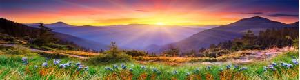 Скинали 'Красочная горная долина'