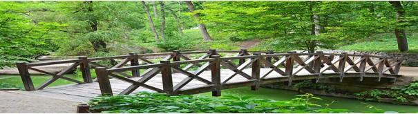 Скинали 'Ажурный мостик'