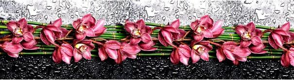 Скинали 'Орихидеи и бамбук'
