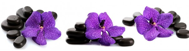 Скинали 'Лиловые орхидеи'