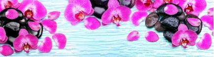 Скинали 'Орхидеи на льду'