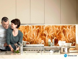 Скинали 'Колосья пшеницы'